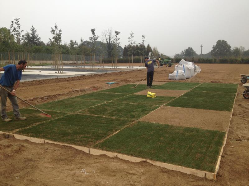 Preparation of POWERgrass